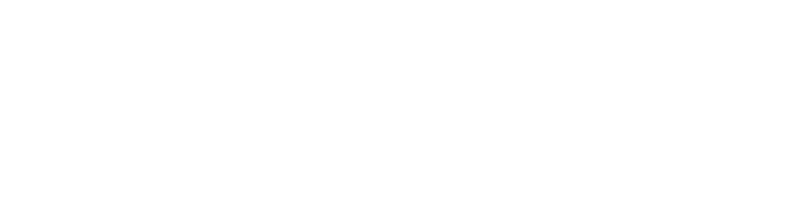 DrTroy_Logo_New_white